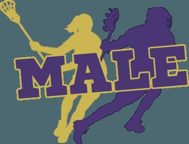 Male Lacrosse Image