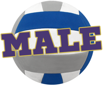Male Volleyball Logo