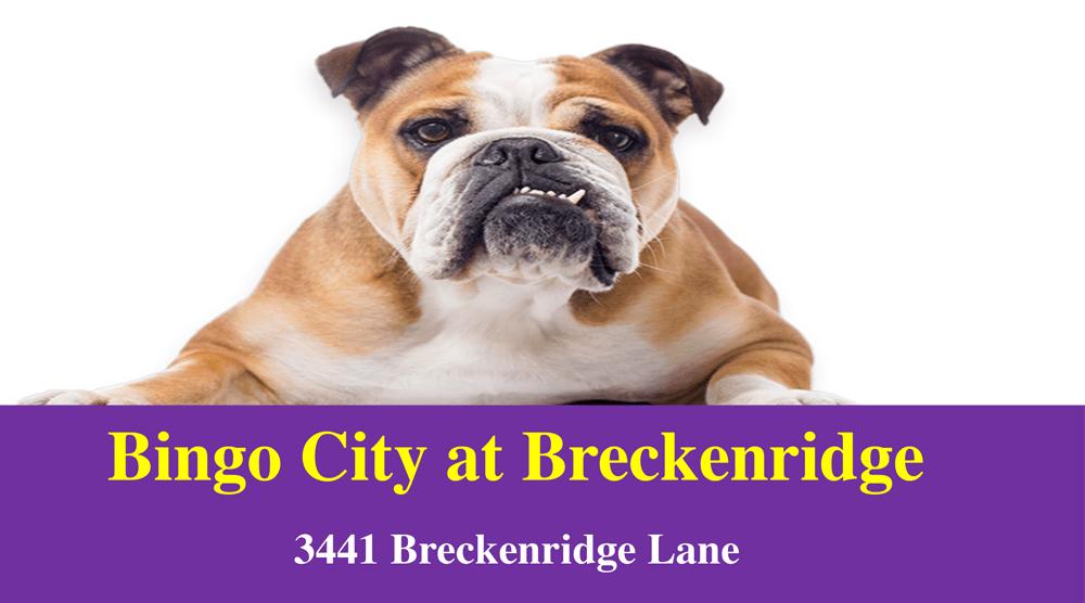 Bingo City at Breckenridge